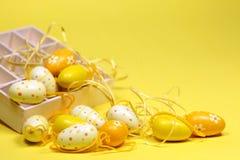 yellow för askeaster ägg Fotografering för Bildbyråer