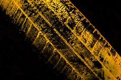 yellow för biltryckgummihjul Royaltyfria Bilder
