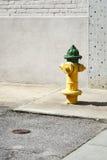 yellow för hydrant för stadsbrandgreen Arkivbilder