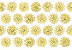 yellow för modell för hjärta för blommor för fjärilsdroppe blom- Fotografering för Bildbyråer