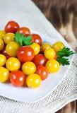 yellow för tomater för Cherryred Royaltyfria Foton