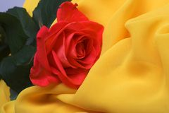 Yellow fabric and rose Stock Photo