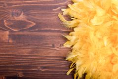 Yellow feather boa on a brown board left space for text Royalty Free Stock Photos