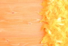 Yellow feather boa on a yellow board on the left with space for Royalty Free Stock Images