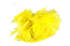 Yellow feather duster Stock Photography