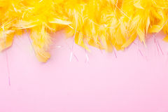 Yellow Feathers on pink background. Festive and holiday Stock Photo