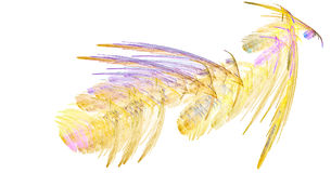 The yellow feathers Royalty Free Stock Image