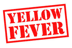 YELLOW FEVER Stock Images
