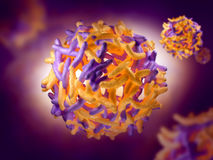 Yellow Fever Virus Royalty Free Stock Images