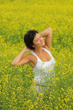Yellow field Stock Images