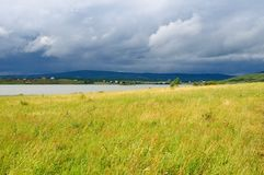 Yellow field near lake after a rain Stock Images