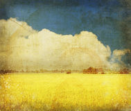 Yellow field on old grunge paper Royalty Free Stock Photo