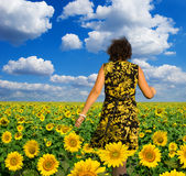 Yellow field of sunflowers. Women wolk on yellow field of sunflowers Stock Images