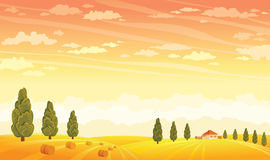 Yellow field and sunset sky. Summer rural landscape. Royalty Free Stock Photography