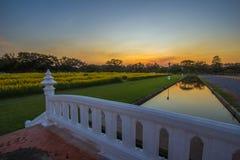 Yellow fields of Crotalaria junceasunn hemp and small white bridge at Phutthamonthon Public Park,Nakhon Pathom Province,Thailand stock photo