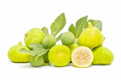 Yellow fig leaves Stock Photos