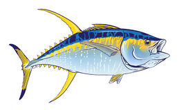 Yellow fin Royalty Free Stock Photo
