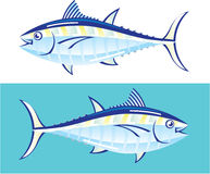 Yellow fin Tuna Vector stylized Stock Photography