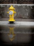 Yellow Fire Hydrant. On sidewalk reflected in puddle of water Stock Photo