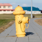 Yellow fire hydrant on a city sidewalk Royalty Free Stock Images