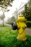 Yellow fire hydrant on a foggy street Stock Photography