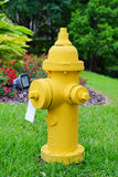 Yellow Fire hydrant with a grass background Royalty Free Stock Photography