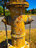Yellow fire hydrant. Lichen, rust and peeling paint adds to the character of this old yellow fire hydrant Stock Image