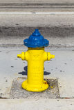 Yellow Fire Hydrant Stock Photography