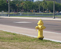 Yellow fire hydrant. A yellow fire hydrant on a St. Petersburg sidewalk Royalty Free Stock Photo