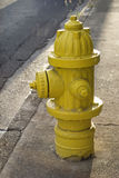 Yellow fire hydrant Royalty Free Stock Image
