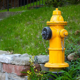 Yellow Fire Hydrant Toronto Canada Royalty Free Stock Image