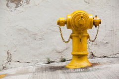 Yellow Fireplug Royalty Free Stock Photography