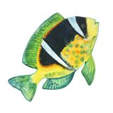 Yellow fish with a black spot, white stripes and green fins -0. Watercolor drawing yellow fish with a black spot, white stripes and green fins  and colorfull Royalty Free Stock Photography