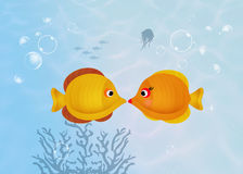 Yellow fish couple. Illustration of yellow fish couple Royalty Free Stock Photography