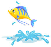 A yellow fish Royalty Free Stock Images