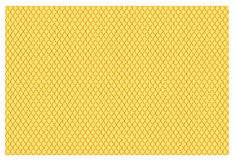 Yellow Fish Scales Stock Photo