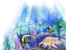 Yellow fish and sea cockleshells Stock Photos