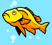 Yellow Fish. A vector illustration of yellow orange fish Royalty Free Stock Images