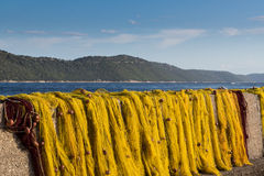 Yellow fishnet drying in the sunlight stock photos