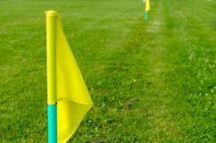 Yellow flags on the green grass of a football playing field. Royalty Free Stock Image