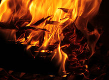 Yellow flame Stock Photography