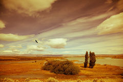 Yellow flat desert. With shallow lakes. Argentine Patagonia on windy summer day Royalty Free Stock Images