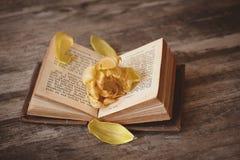 Yellow, Flavor Royalty Free Stock Photo