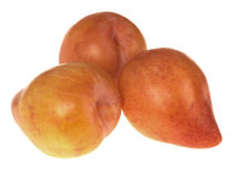 Yellow Flesh Plums Royalty Free Stock Photos