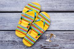 Yellow flip flops and tiny palm. Flat lay, beach footwear concept on grey wooden background stock photo