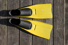 Yellow flippers Stock Photos
