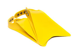 Yellow flippers on white Stock Images