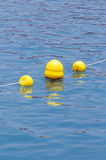 Yellow Floaters Stock Photography