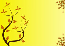 Yellow Floral Background Royalty Free Stock Photography