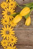 Yellow floral decoration on wooden background. With tulips Stock Images